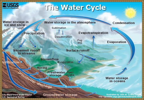 The Water Cycle:  color graphic showing the movement of water through the water cycle, from evaporation and transpiration to condensation, to water storage in the atmophere, to precipitation, to water storage in ice and snow, surface runoff, snowmelt runoff to streams, streamflow, and freshwater storage.  A cut away shows the ground water portion of the water cycle, from infiltration to ground water storage and ground water discharge into springs and freshwater storage.  Surface runoff, freshwater storage, ground water storage, and ground water discharge are all shown contributing to water storage in oceans, where the evaporation portion of the water cycle starts again.